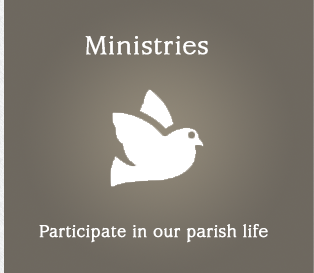 Blessed Mother Teresa Parish Ministries