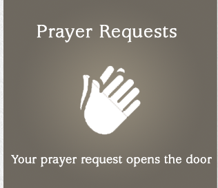 Blessed Mother Teresa Parish in Depew Prayer Requests